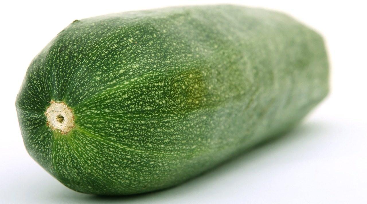 zucchinipflanzen anzucht pflege und ernte. Black Bedroom Furniture Sets. Home Design Ideas
