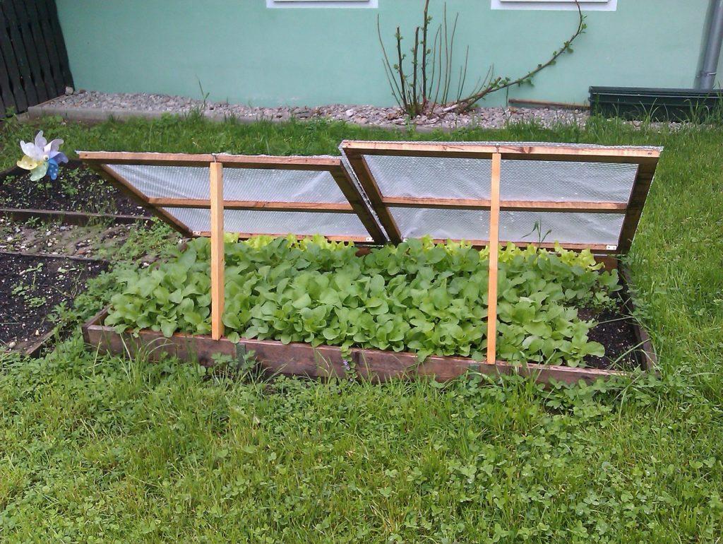 Frühbeete Anlegen, Selber Bauen Und Richtig Bepflanzen Garten Fruhbeet Vorteile Tipps