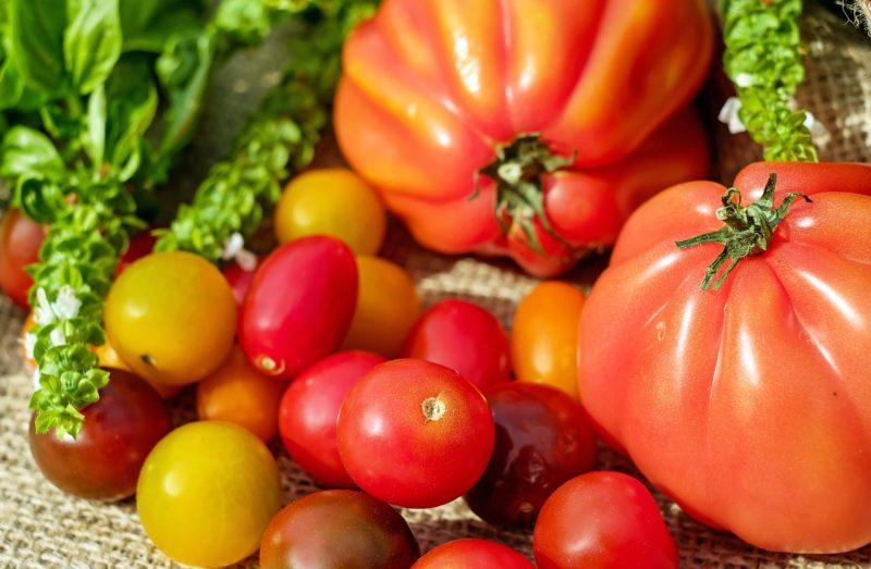 Bild Tomatensorten